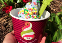 The slogan on the cup says it all: Menchie's makes you smile.