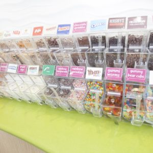 An array of froyo toppings are shown in clear plastic display bins.